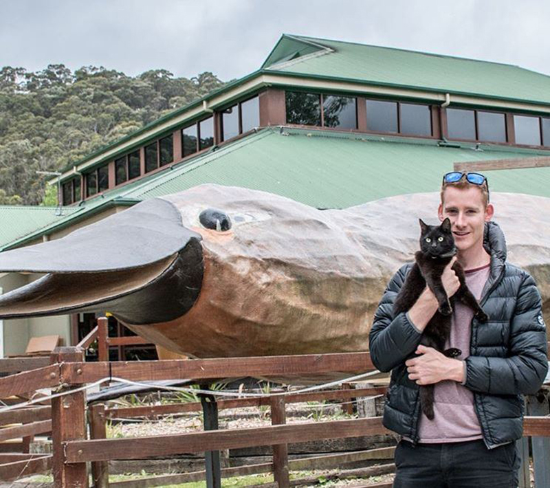 tasmania-travels-van-cat