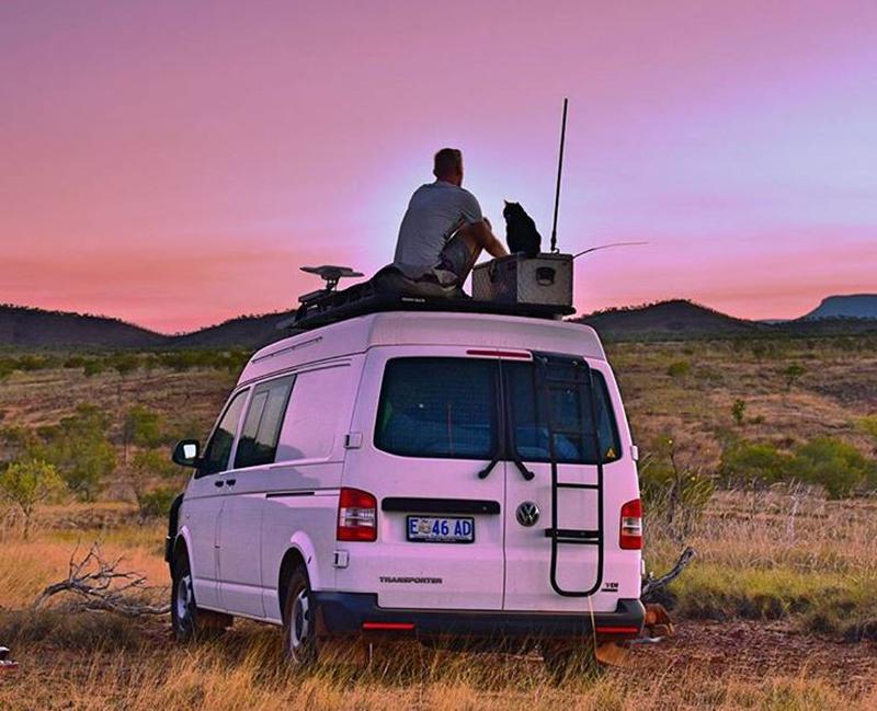 van-cat-road-trip