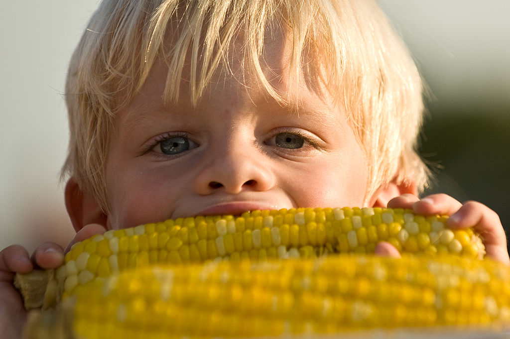 A boy eating corn