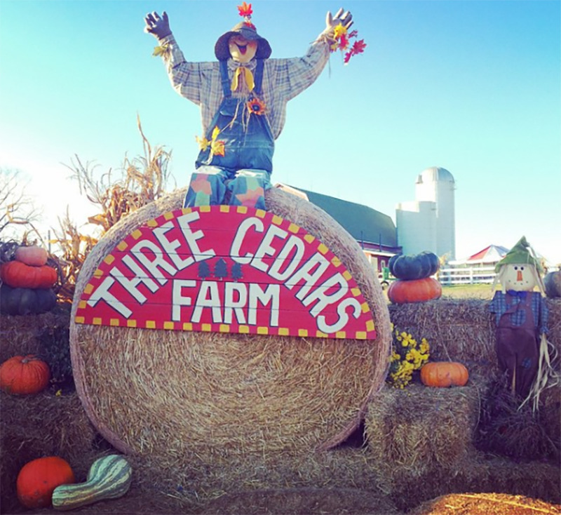 A happy scarecrow sits on top of the Three Cedars Farm sign