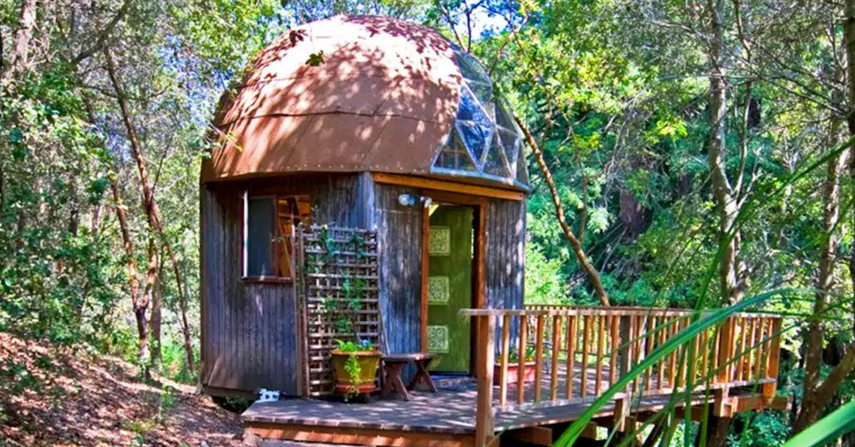 mushroom dome cabin in a forest
