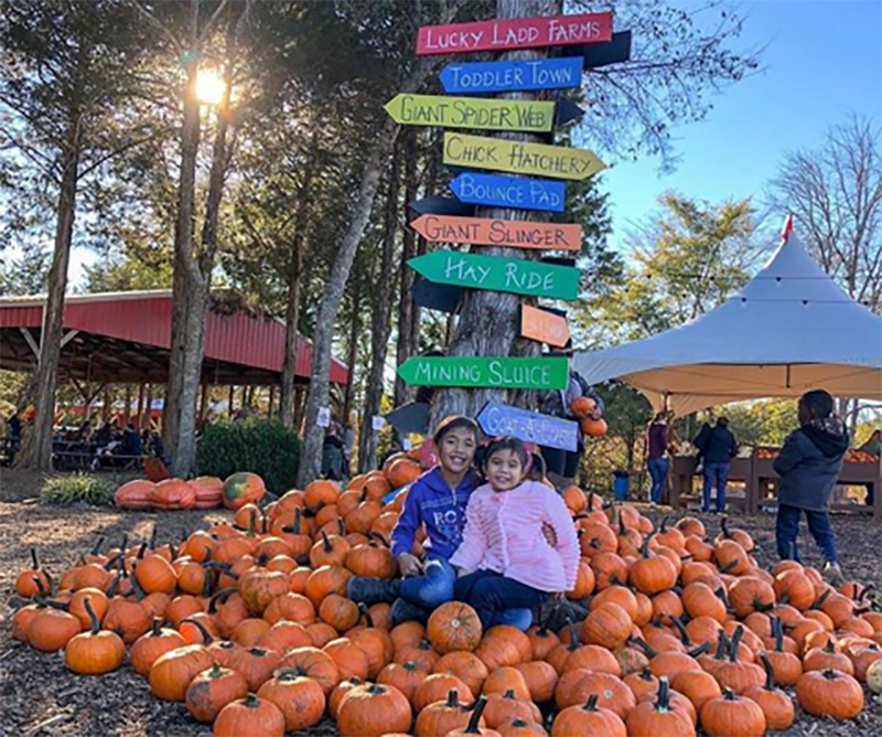 Two girls sit in a pile of pumpkins at the base of a tree sign