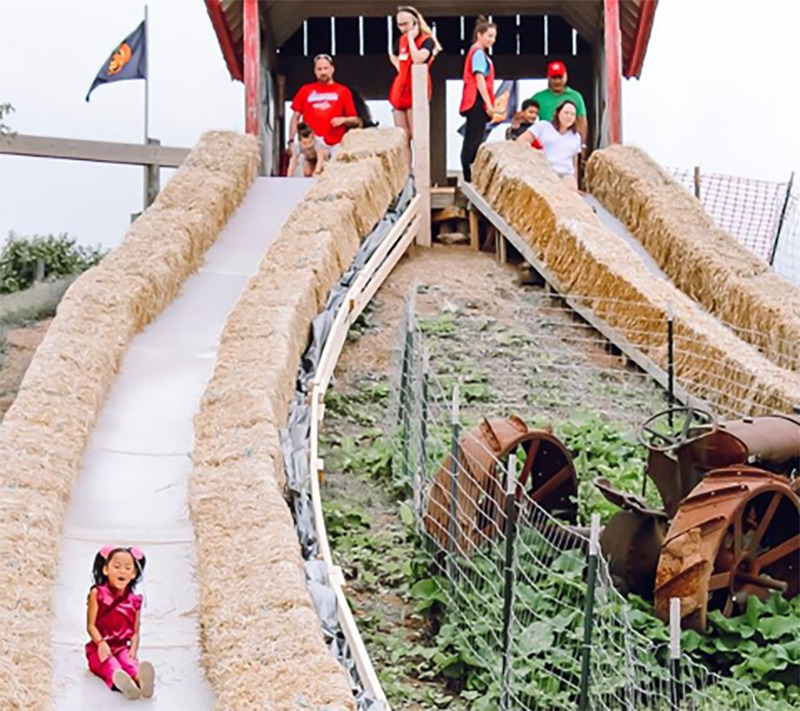 A girl goes down a slide lined with hay