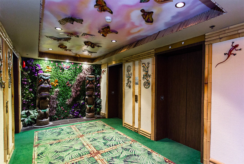 A rainforest themed elevator space