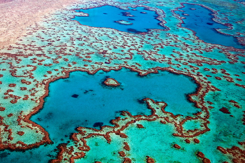 Helicopter Ride Over The Great Barrier Reef