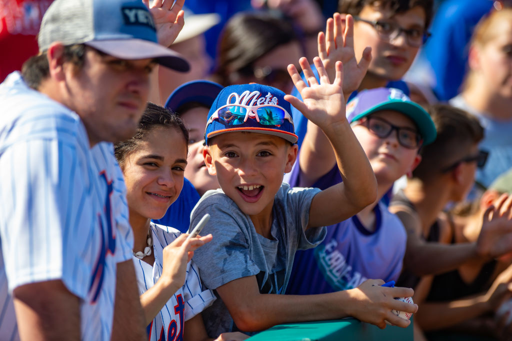 mets fans at a game in new york