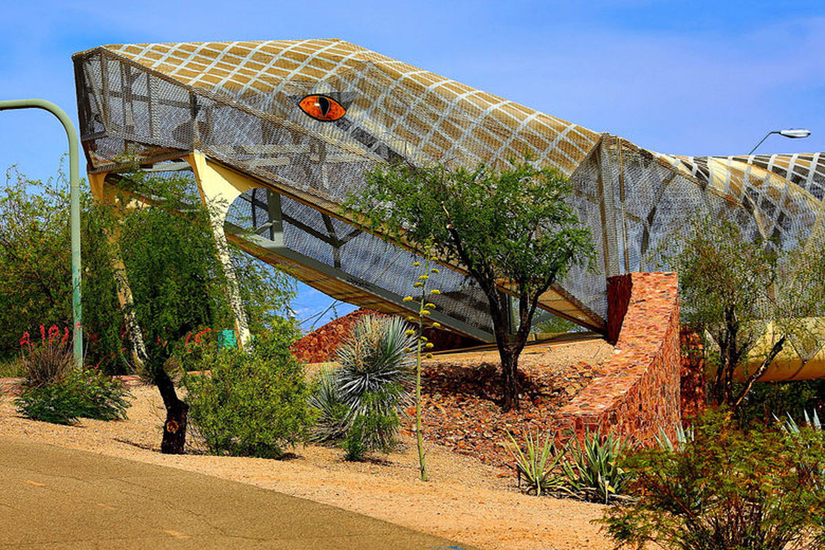A bridge in Tucson is shaped like a diamondback snake.