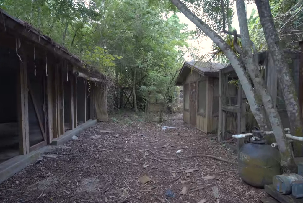A Youtuber explores the abandoned buildings of Disney's Discovery Island.