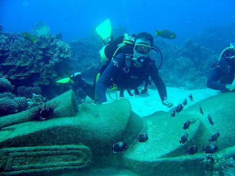A scuba diver looks at a school of fish.