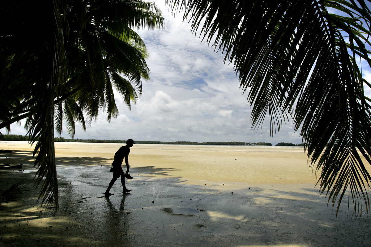 A person walks through the empty landscape of Palmyra Atoll, located in a remote area of the Pacific Ocean.