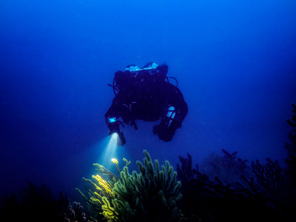 A scuba diver uses a flashlight in dark water.