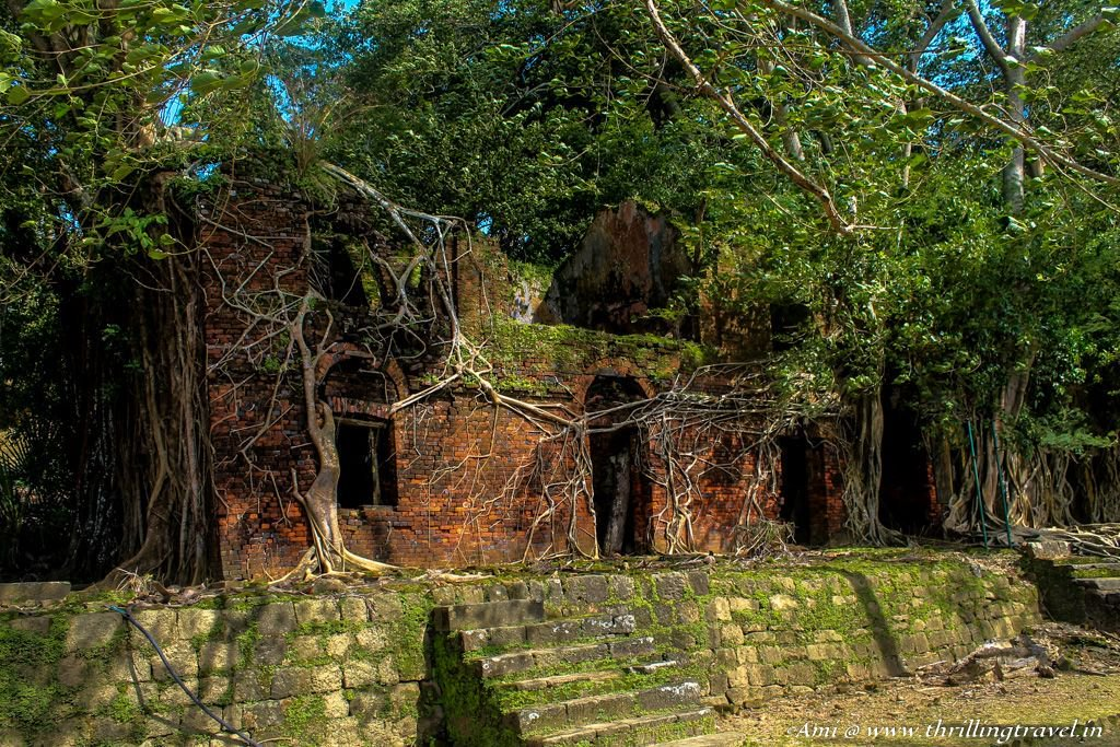 Nature reclaims abandoned structures at Ross Island in India.