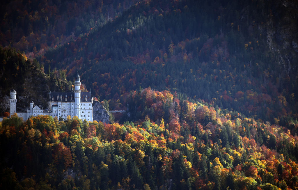 Neuschwanstein Castle surrounded by colorful trees