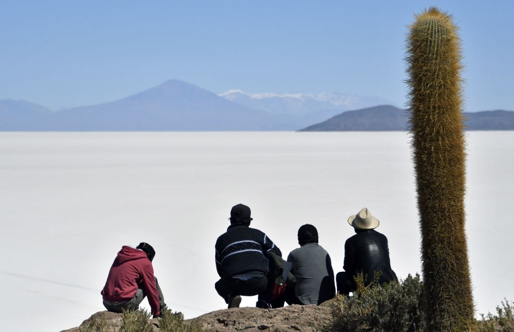 visitors looking at The Salar de Uyuni near a cactus plant