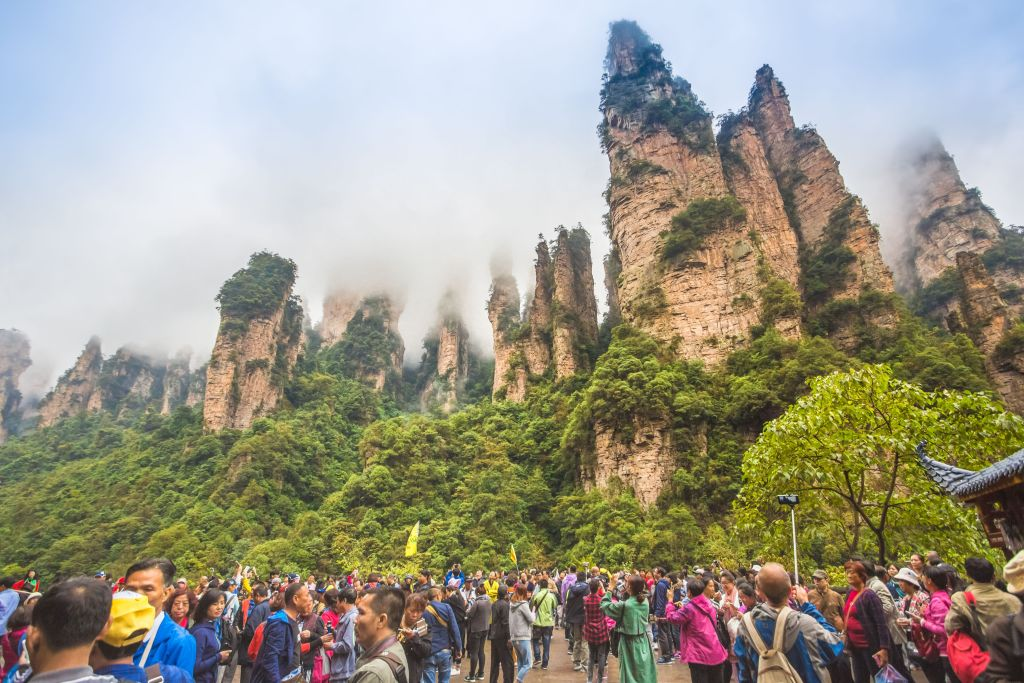 towering trees on cliffs in the Zhangjiajie National Forest Park with tourists standing below