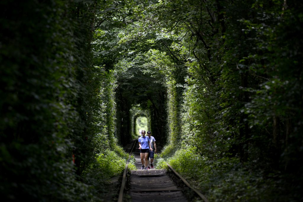 two people walking under trees that form a tunnel around railroad tracks called the tunnel of love