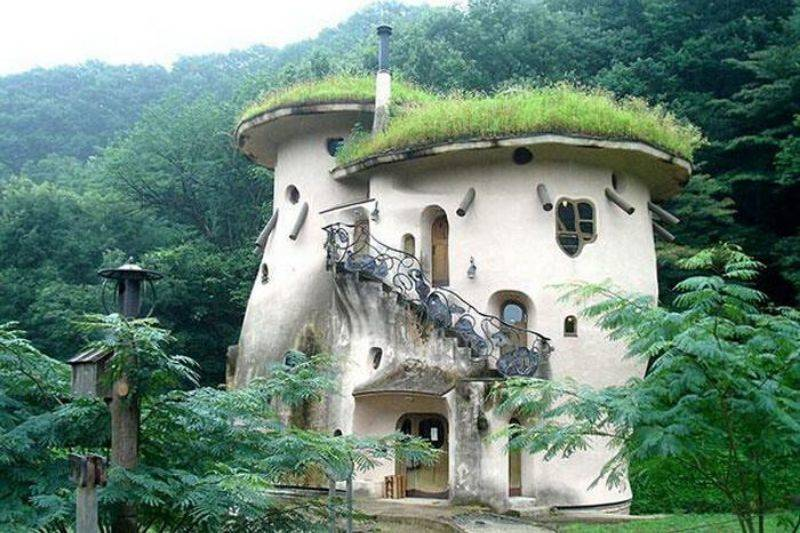 a house that looks like a mushroom