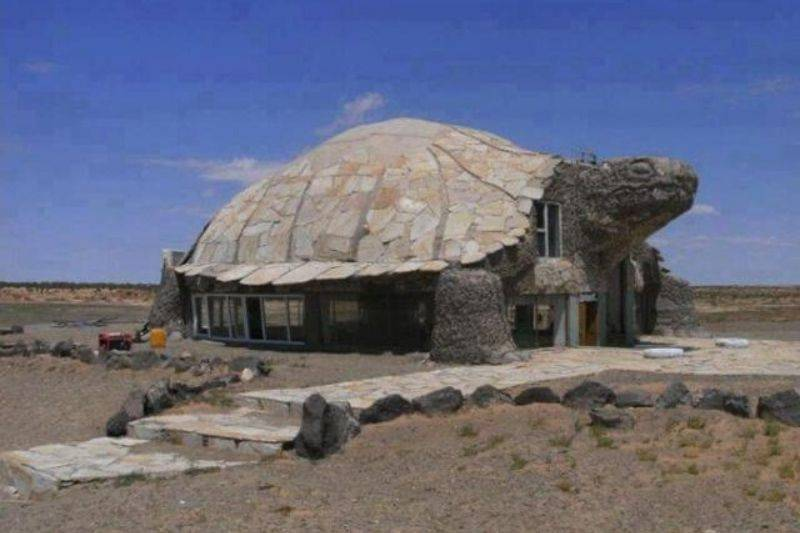 a restaurant shaped like a turtle