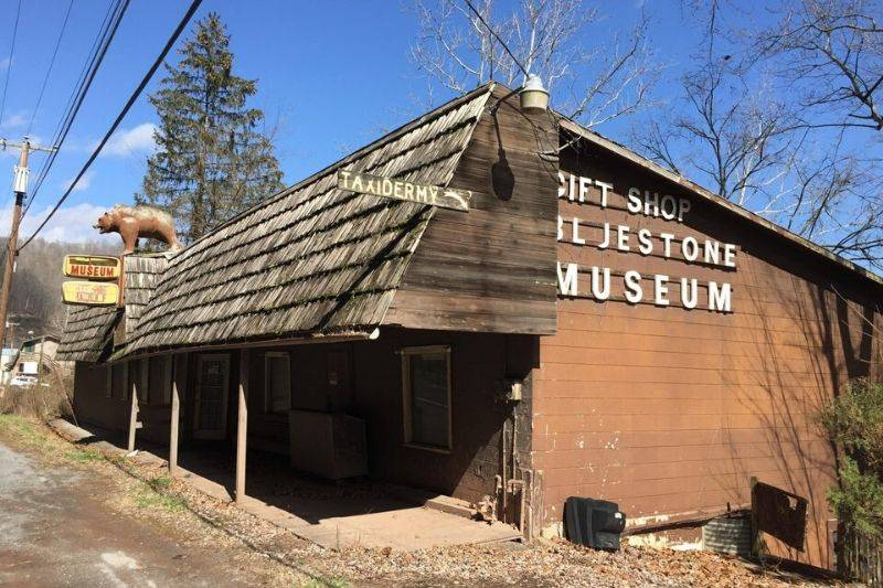 an abandoned taxidermy museum