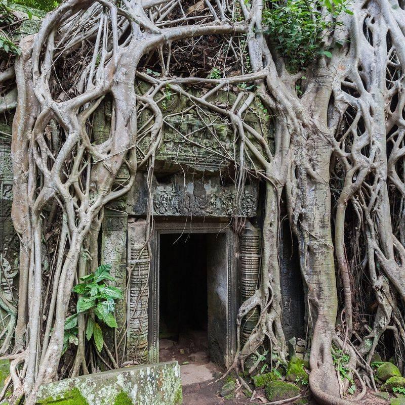 Ta Phrom in Cambodia
