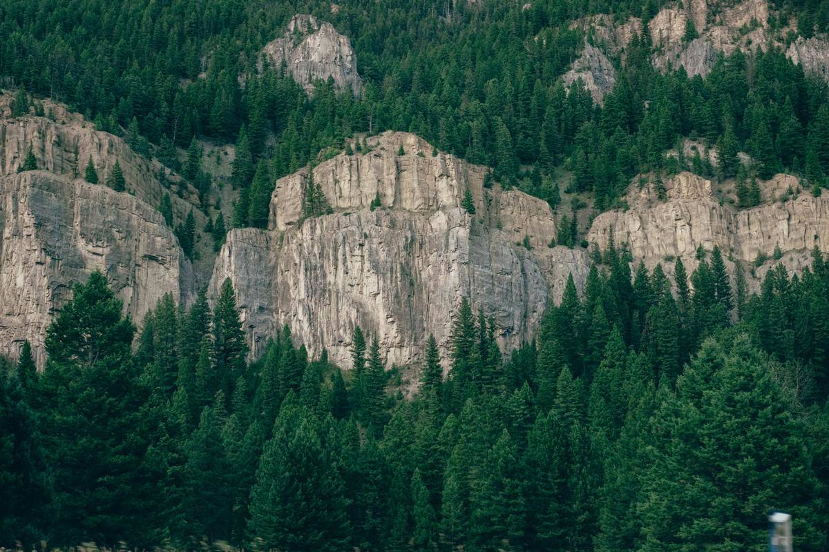 trees surrounding large rocks in Big Sky, Montana