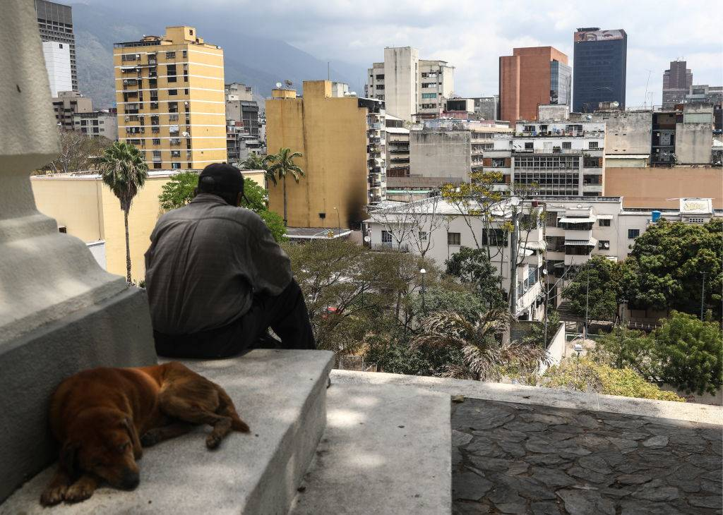 a man and a dog sitting near buildings in Caracas, Venezuela