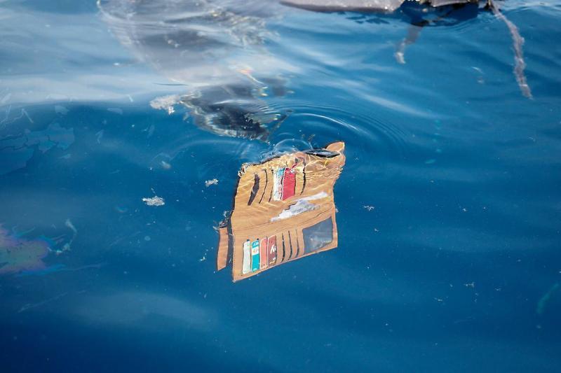 wallet underwater