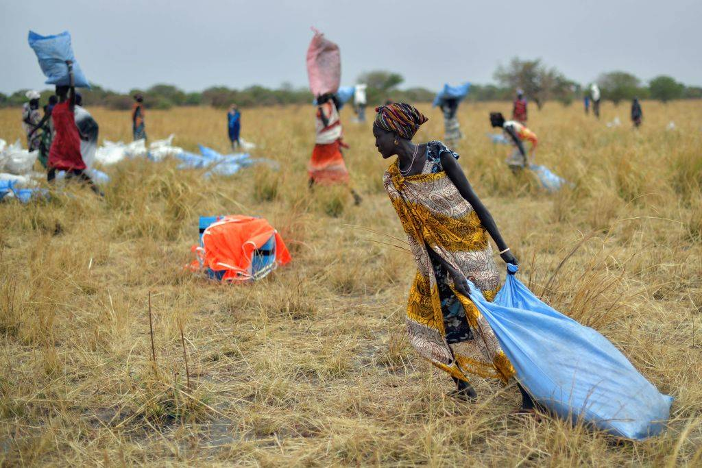 people collecting food that's been air dropped in Juba, South Sudan