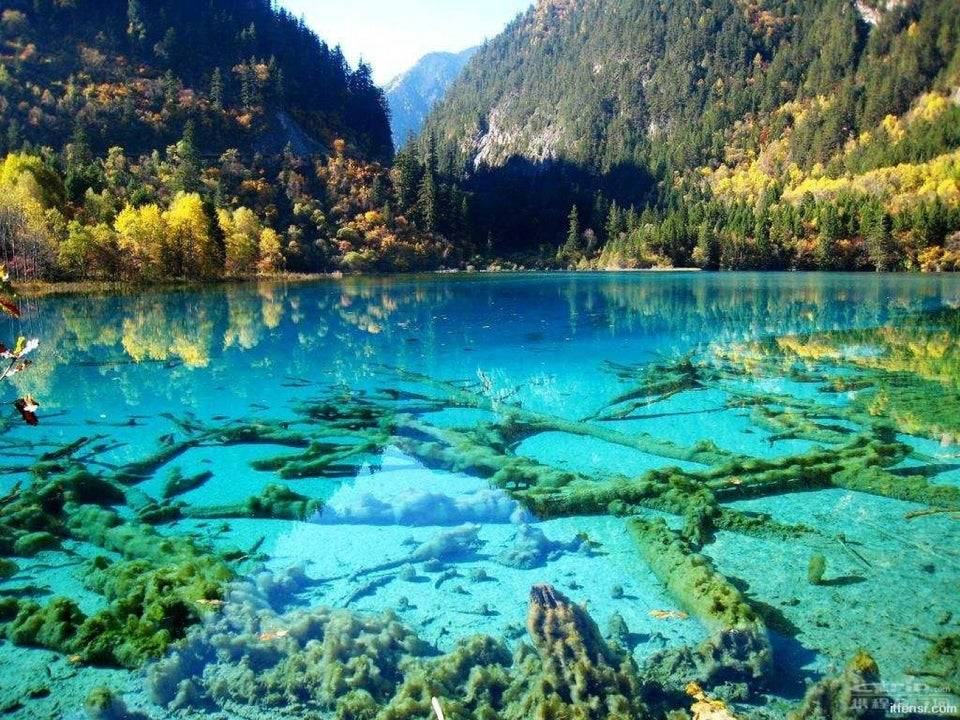 crystalline turquoise lake, Jiuzhaigou national park china
