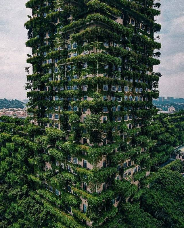 building with greenery on every level
