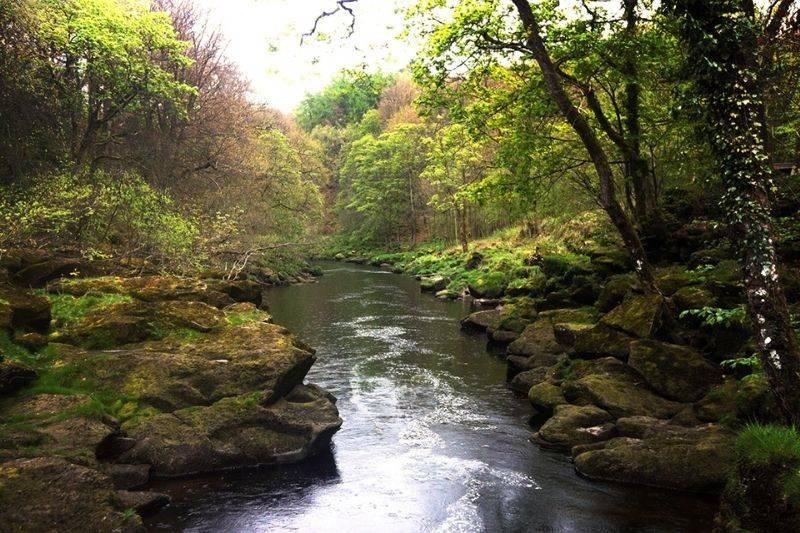 The Bolton Strid