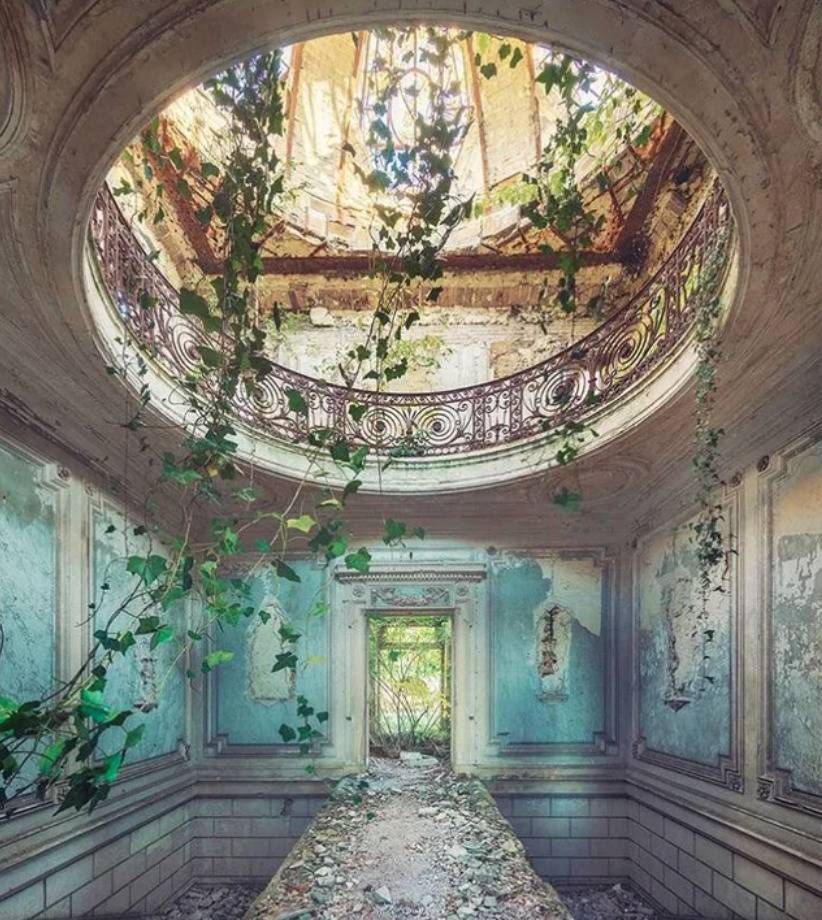 romantic era building with ivy hanging through hole in ceiling