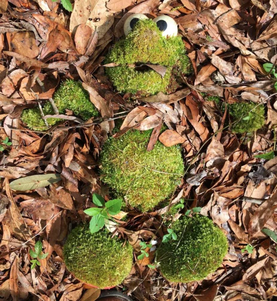 Elmo Doll Covered in moss