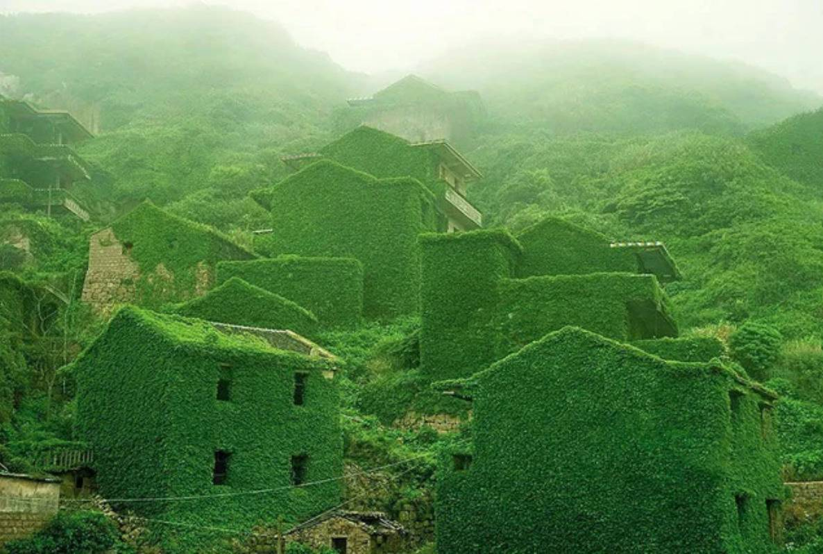 village with all the structures overgrown with greenery