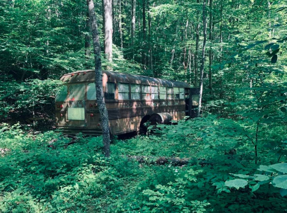 bus in forest