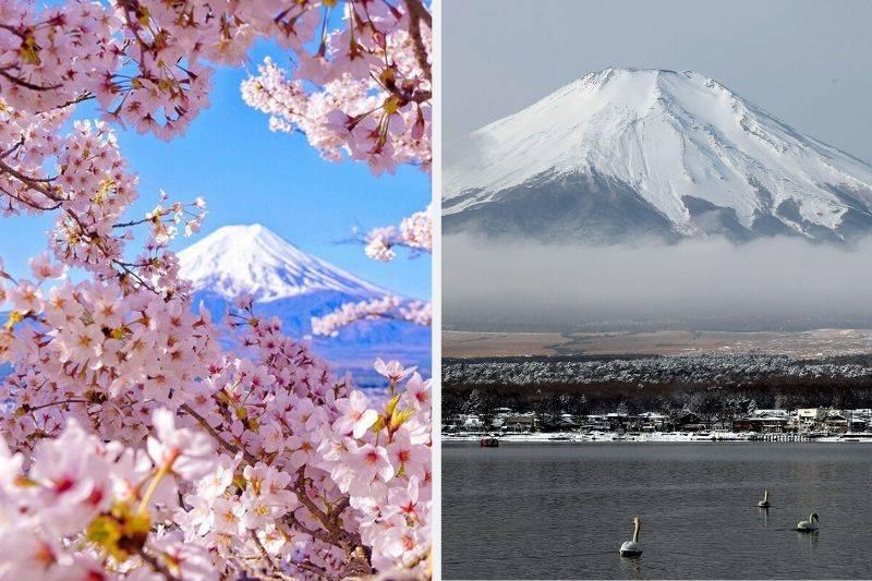 mount fuji instagram vs reality