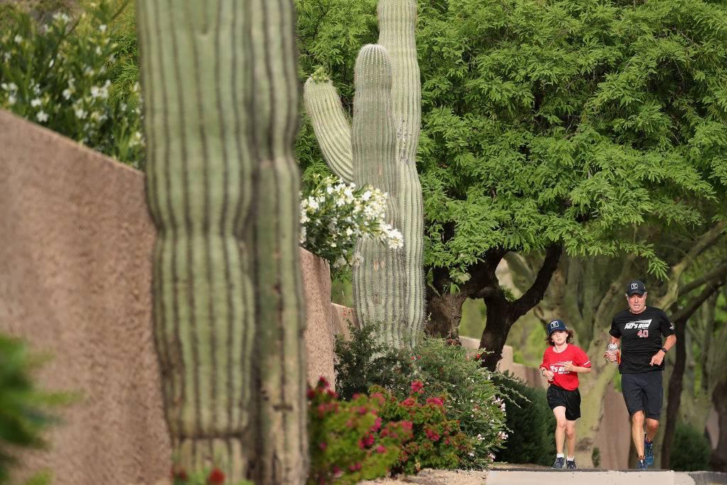 people running near trees and cacti in phoenix, arizona