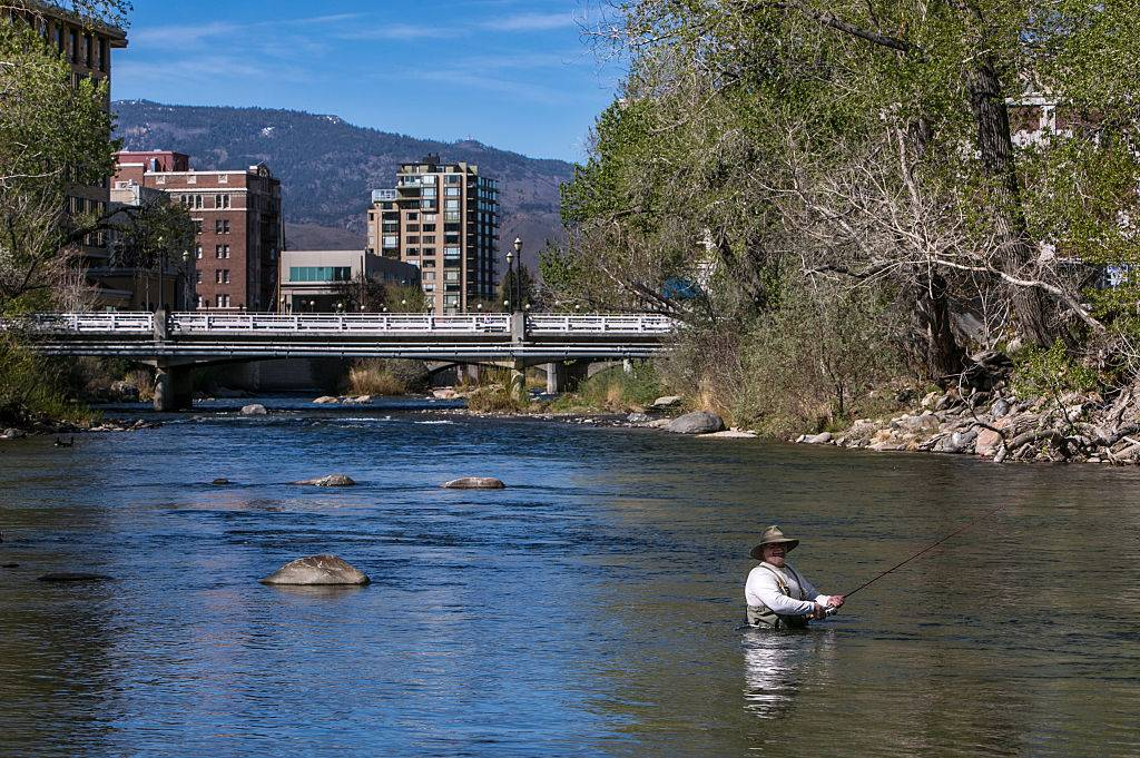 a fisherman waist-deep in a river in reno, nevada