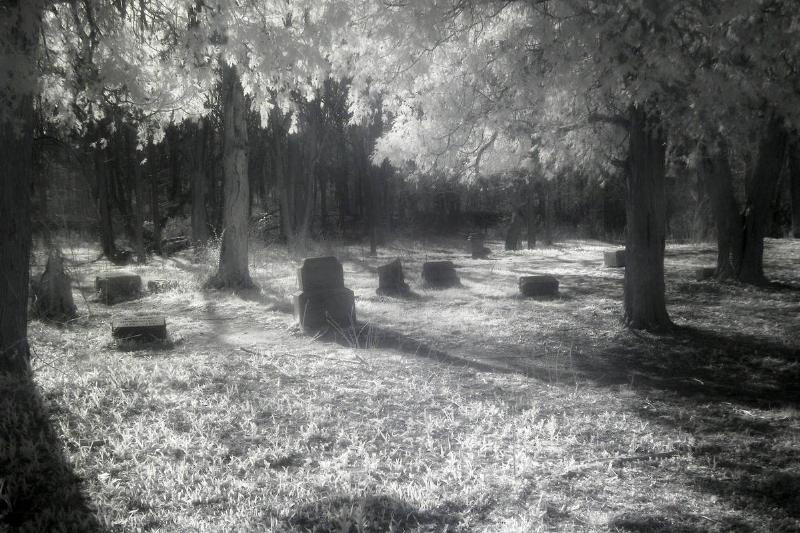 Bachelor's Grove in infrared