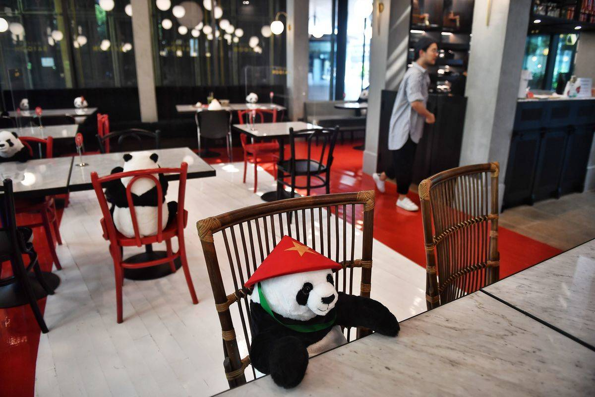 stuffed pandas sitting sporadically at restaurant tables