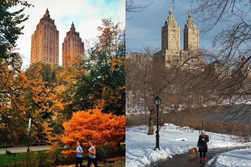 central park fall vs winter
