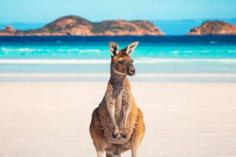 navigateaustralia