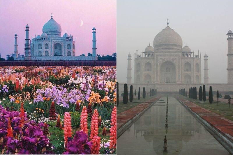 taj mahal spring vs fog winter