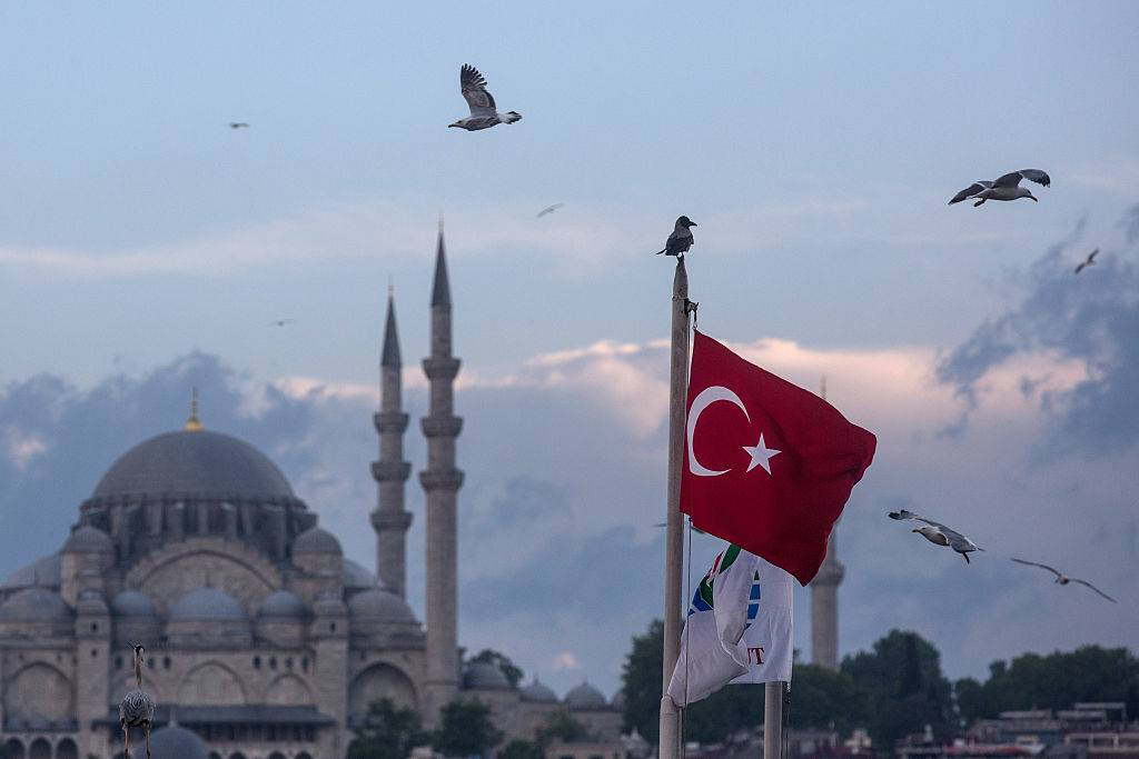 the turkish flag surrounded by birds