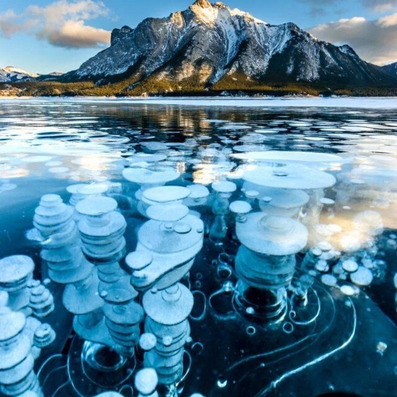 methane bubbles in Abraham Lake