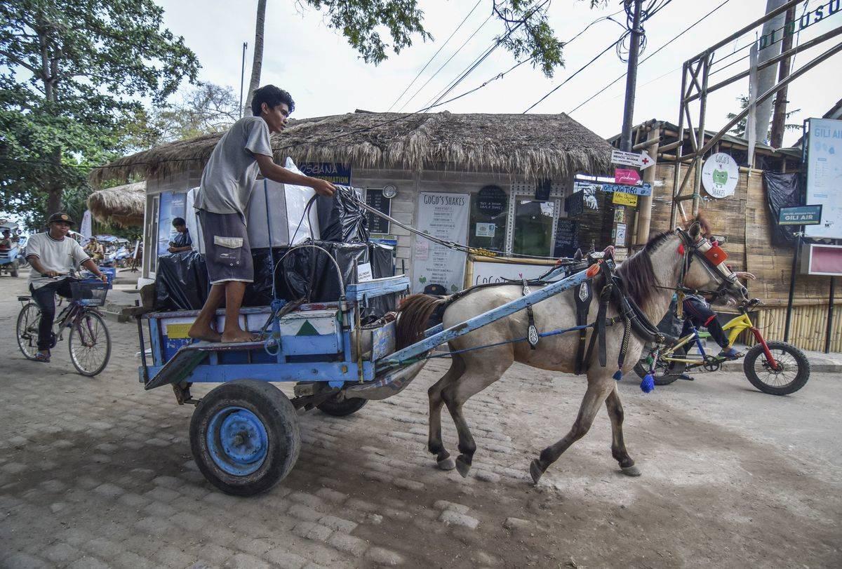 A worker driving horsecart