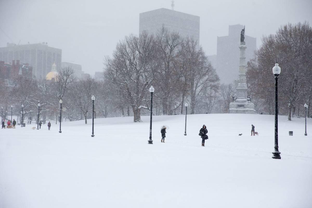 Snow blankets park