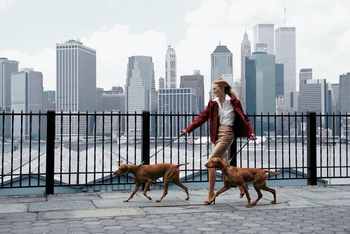 woman walking dogs on the Promenade