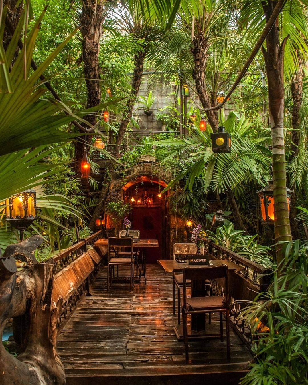 wooden furniture surrounded by tropical plants in dining area
