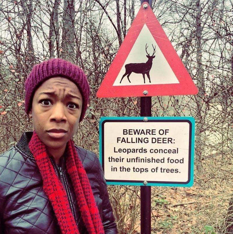 a beware of falling deer carcass sign